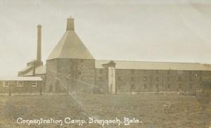 frongoch camp