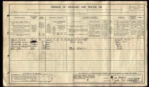 1911 census reduced