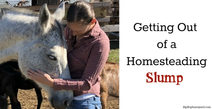 Getting Out of a Homesteading Slump