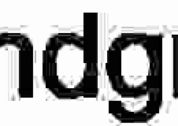 Pumpkin Seed Power Bars