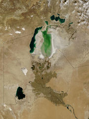 Satellite view of the Aral Sea