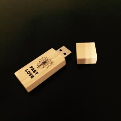 The Homeless – FASTLOVE Discography USB