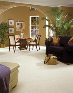 Carpet Stores   Jacksonville  FL carpet flooring in jacksonville