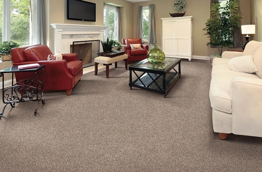 2020 Carpet Trends 21 Eye Catching Carpet Ideas Flooring Inc | Low Pile Carpet For Stairs | Laminate | Unusual | Looped | Antelope | Bedroom