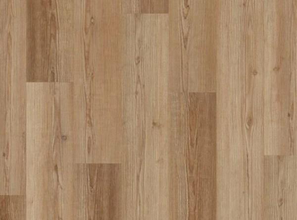 COREtec Galaxy Luxury Vinyl - Andromeda Pine @ Floors Direct North