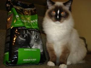 Worlds Best Cat Litter and Charlie