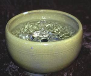 cat fountain or indoor water fountain Sea Mist