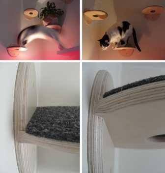 "Shelving system for cats ""Lucas""."