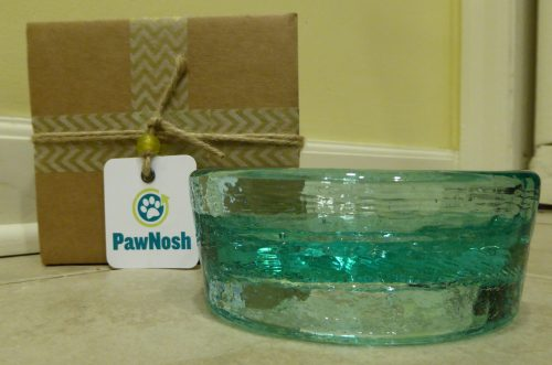 PawNosh Cubby Mini Glass Bowl Product Review Wrapping