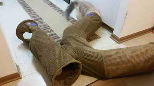 Neko Pawdz UI Cat Play Tunnel System Giveaway Winner