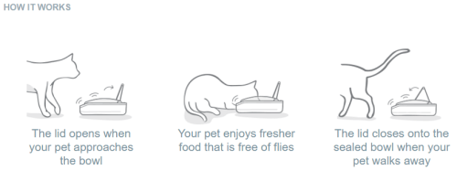 Sealed Pet Bowl How It Works