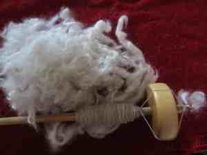 Cat Hair Yarn Interview with Irene Lerman of PetHair2KnitWear 2