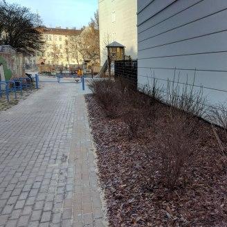 Eingang frisch bepflanzt