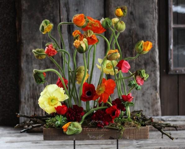 FloraLaVie_1223-L