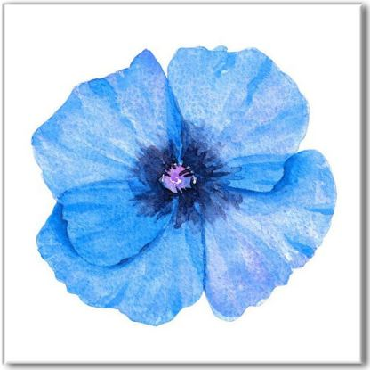 Floral ceramic wall tile, bright blue poppy flower on a white square background