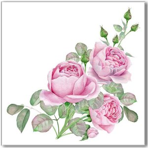 Vintage rose wall tile, pale pink roses spray with buds and green leaves on a white background
