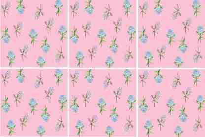 Hydrangea Tiles - Blue and Pink Flowers on a Pink ackground, Ceramic Wall Tile Pattern Example