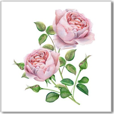 Shabby Chic Tiles - Pale Pink Watercolour Roses Ceramic Wall Tile