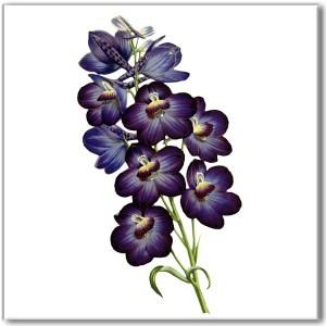 Blue Tiles - Violet flower ceramic wall tile