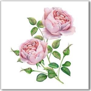 Flower Tiles - Pale Pink Roses ceramic wall tile