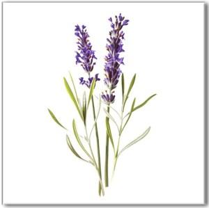 Flower Tiles - purple Lavender flower ceramic wall tile