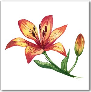 Flower Tiles - red and yellow Lily flower ceramic wall tile