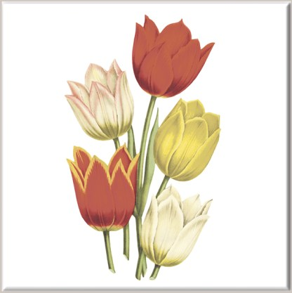 Red and Yellow Tulip Flowers Ceramic Wall Tile
