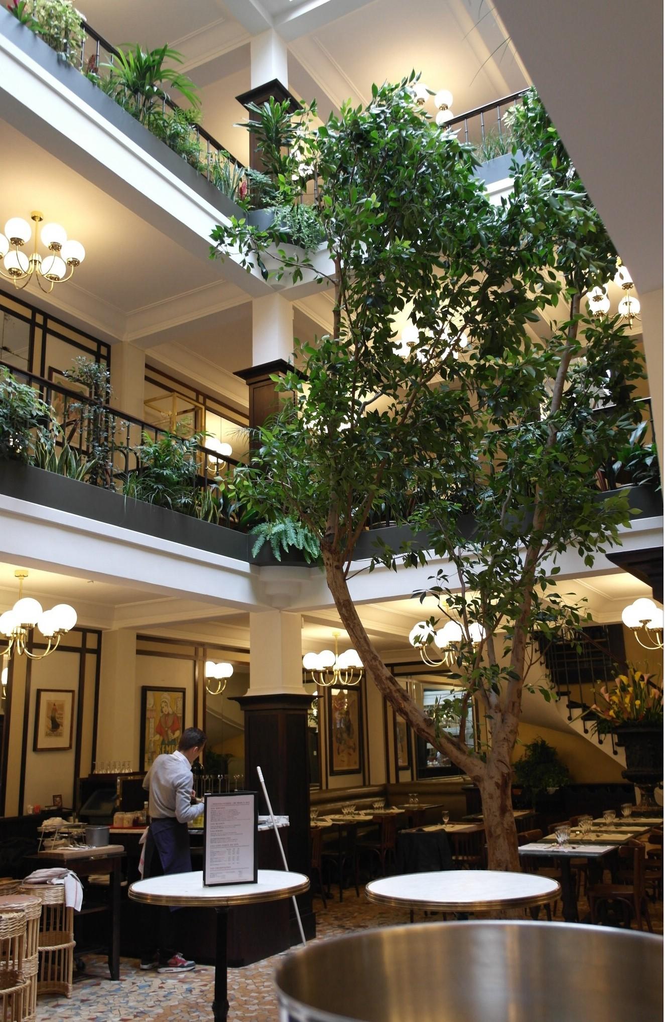 preference decoration vegetale d interieur pour bureaux hq35
