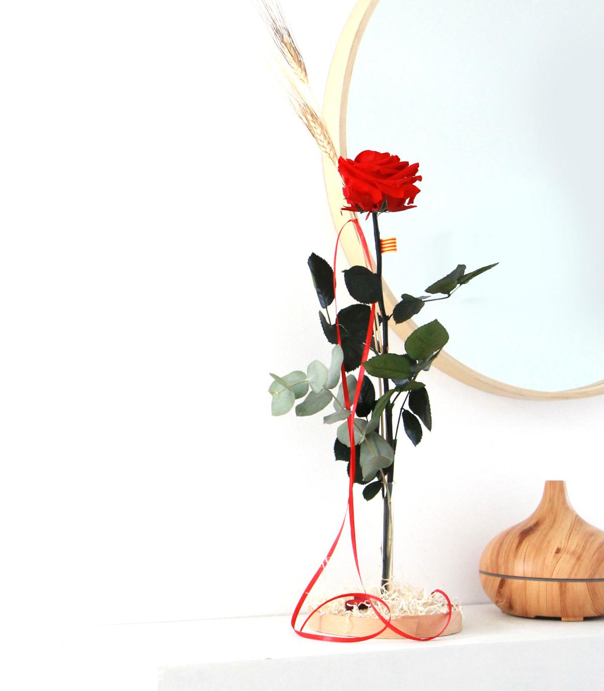 Rosa Liofilizada de Sant Jordi