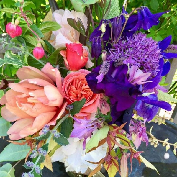 Tree peony, iris and allium