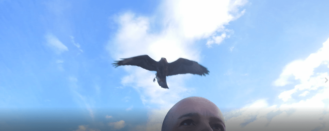 L'homme qui regarde le Soleil