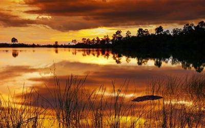 Summer Airboating Tips to best enjoy the sunset on a Florida Everglades Airboat Tour