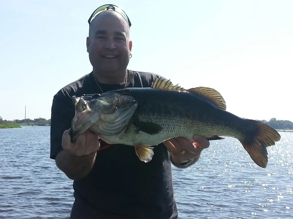 Keith 39 s lake toho monster orlando bass fishing guides for Lake toho fishing guides