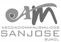 AMSJ logo BN