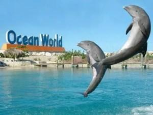oeanworld