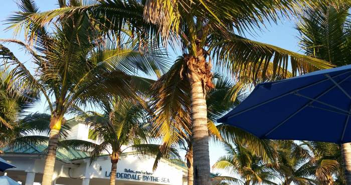 Lauderdale By The Sea Home For Sale Report December 2016