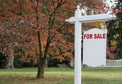For Sale Sign.jpg