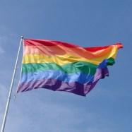 Gay Flag Pole.jpg