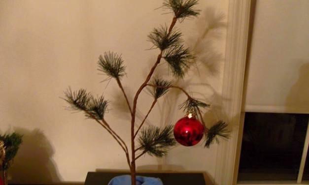 CHRISTMAS TREE SELECTION AND CARE TIPS