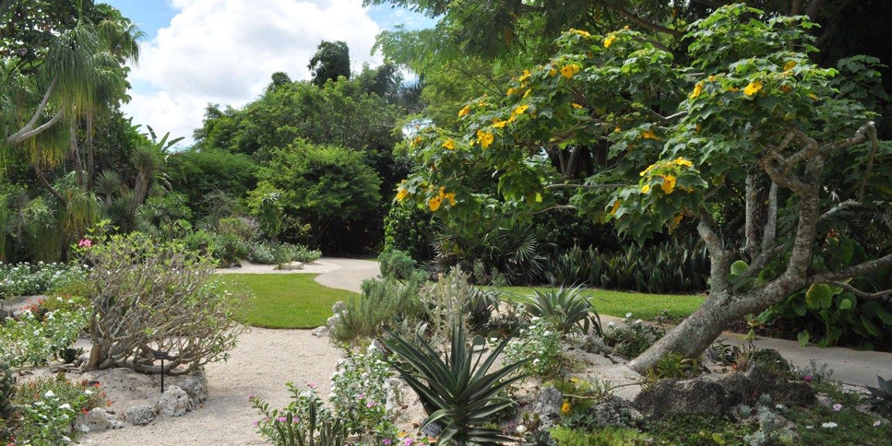 """XERISCAPING DOES NOT MEAN """"ZEROSCAPING"""""""