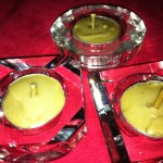 HOW TO MAKE MYRICA CERIFERA, WAX MYRTLE OR SOUTHERN BAYBERRY CANDLES