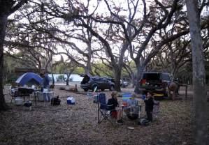 Tent sites under the oaks at Camp Venice