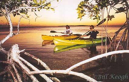 Big Pine Kayak Adventures, Big Pine Key, Florida