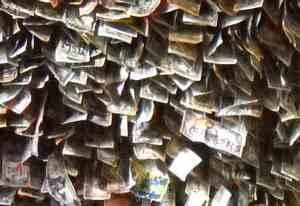 Florida Keys No Name Pub, close up of money
