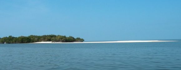 Indian Key in the Ten Thousand Islands