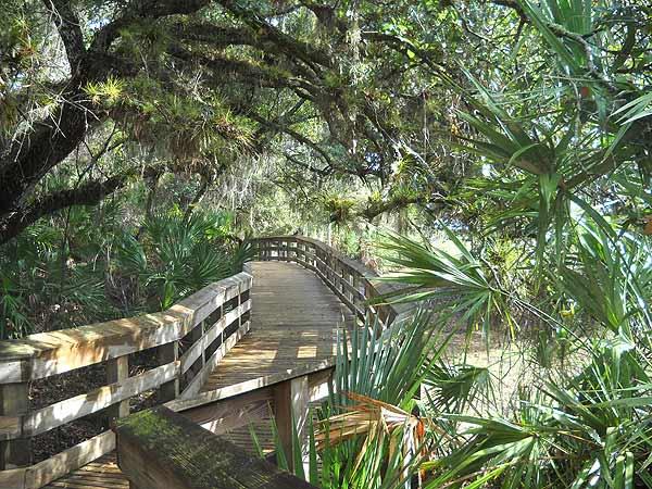 Florida hike: Barley Barber Swamp boardwalk