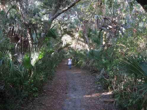 castle-windy-trail