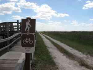 Bike trail atop levee at Loxahatchee National Wildlife Refuge