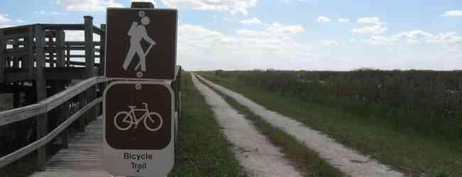 Bike trail along the levee