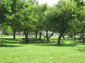 Picnic area at Crandon Park Beach